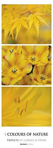 Colours of Nature 2019 Streifenkalender XXL: Triplets
