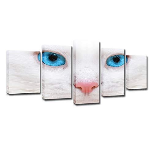 Leinwand Wandkunst, modulare Leinwand Gemälde Wandkunst Bilder Mode Home Room Decor, 5 Stück weiße Katze Blaue Augen, Poster HD Print,Frame,XL