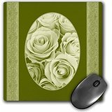 jaclinart-garden-nature-florals-flowers-roses-vintage-damask-pale-sage-roses-in-oval-frame-on-dark-o