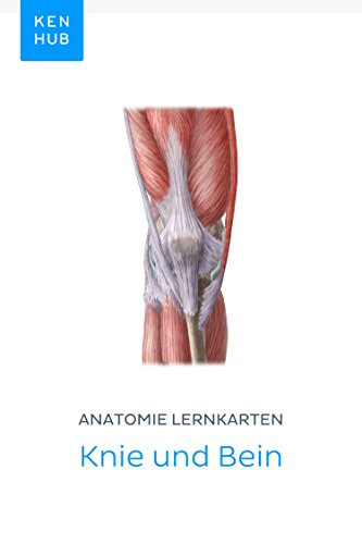 Anatomie Lernkarten: Knie und Bein: Lerne alle Knochen, Ligamente ...