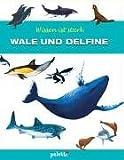 Wissen ist stark. Wale und Delfine.