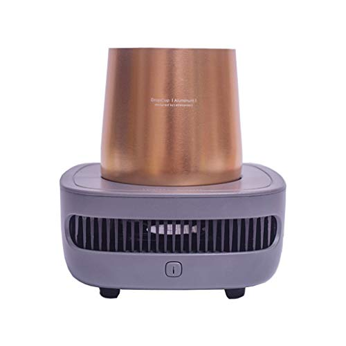 Transwen Mini Kühlschrank, Flaschenkühler Getränkekühler Für Camping, Strand, Tragbarer USB-Kühlschrank Kleiner Haushalts Kaltes Bier, Trinken (Grau)