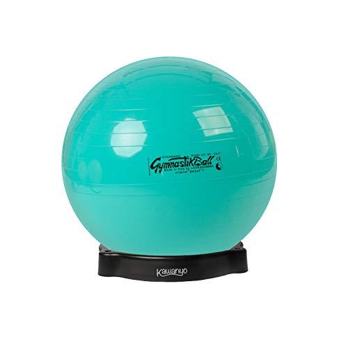 Original Pezzi Pezziball Standard 65 cm m. Ballschale Kombi Gymnastikball grün