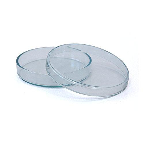 3 x Petrischale 120x20mm aus Kalk-Soda-Glas ohne Nocken - bis 135°C im Autoklaven sterilisierbar - Petrischalen, Kulturschale, Agar Agar Schale, Zellkulturschale, Kulturschalen, Agar Agar Schalen, Zellkulturschalen