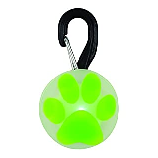 Nite Ize Petlit - Accesorios para Mascotas para Hombre, Color Verde (B005O0RW70) | Amazon price tracker / tracking, Amazon price history charts, Amazon price watches, Amazon price drop alerts