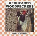 Red Headed Woodpecker (Birds) by Jim Gerholdt (1997-09-03) -
