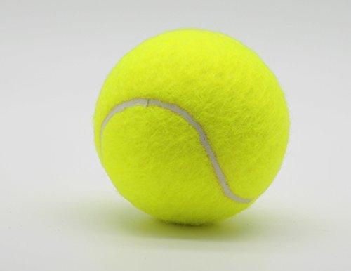 Price's Tube of 4 Colour tennis balls(1 x 4 Yellow balls)