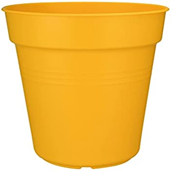 Elho Green Basics Pot de Fleurs Intense Yellow 30 x 30 x 27,6 cm