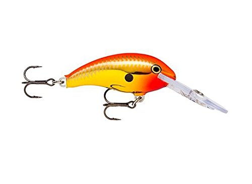Rapala's Shadow Rap | Jerkbait (Chrome Gold Fluorescent Red)