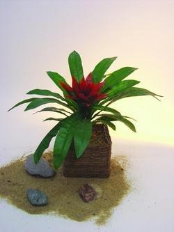 Guzmania, mit roter Blüte, 27 längliche Blätter, Höhe 48cm – künstliche Bäume, Kunstbäume, Künstliche Bäume