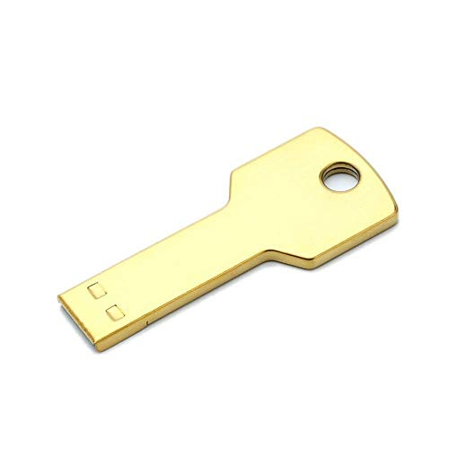 CHUXIANGJIAN Metallschlüssel U-Diskette 16G, 32G, 64G, 1pcs USB 2.0 Flash-Laufwerke USB Memory Stick Thumb Jump Drive (größe : 16G) (Drive Jump 16 G)
