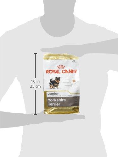 ROYAL CANIN Yorkshire Junior Dog Food, 0.5 kg 5