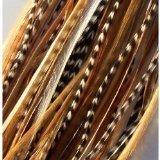Extensiones pelo 15 cm mezcla plumas naturales 5 plumas