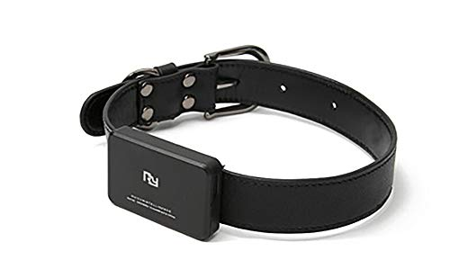 GPS PET Collar, Global Locator Echt Zeit Pet GPS Tracker Für PET Dog/Cat GPS Collar Tracker, Schwarz