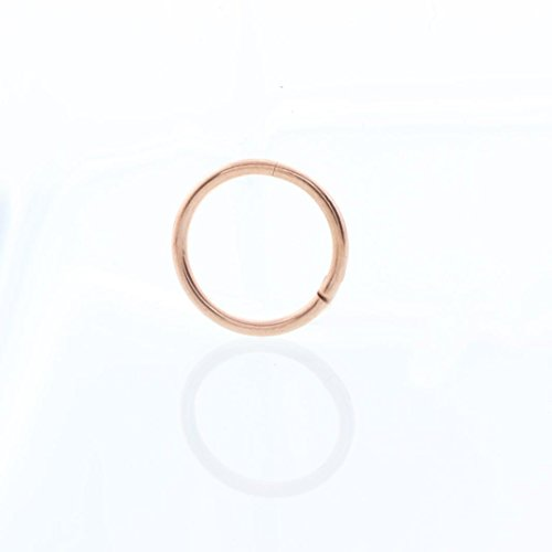 Minshao Seamless Hinged Segment Sleeper Clicker Ring Hoop Ear Lip