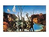 Kunstdruck/Poster: Salvador Dalí Schwäne spiegeln Elefanten. 1937