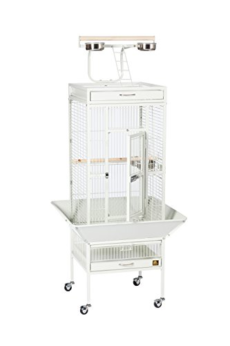 Prevue Hendryx 3151C Pet Products Wrought Iron Select Bird Cage, Chalk White,18'' x 18'' x 57'' 4