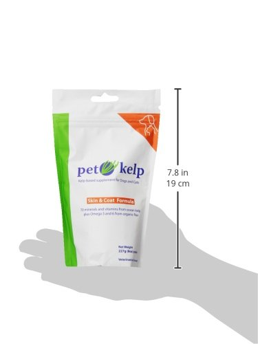 Pet Kelp Skin and Coat Formula Powder Antioxidant Supplement Dogs Cats 8oz - 4