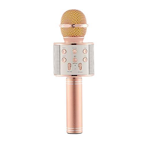 Drahtloses Bluetooth Karaoke Mikrofon, Tragbare Integrierte 1800mAh Lithium Batterie Rauschunterdrückung Audio Mikrofon Player Lautsprecher für IOS & Android Smartphone, PC, Zuhause, KTV, Party