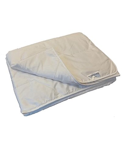iSleep Sommer Bettdecke Bambus Comfort - 2 person -200 x 220-weiß