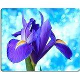luxlady Gaming Mousepad Bild-ID: 27189994Schöne blaue Iris Blumen Hintergrund