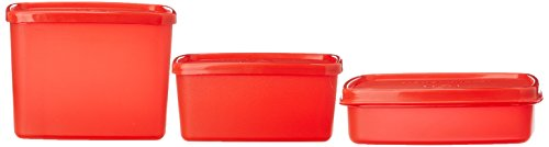 Signoraware Director Special Medium Lunch Box with Bag