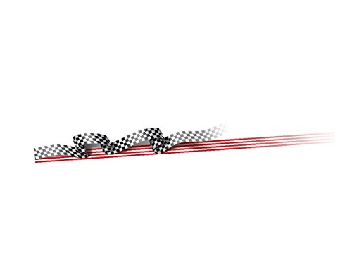 Autographix Racing Styling Graphic Decals for Car (Set of 2)