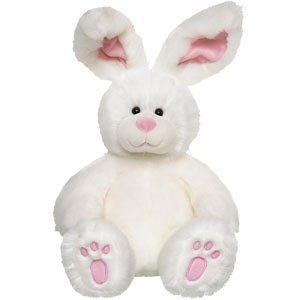 Build-A-Bear Workshop Springtime Fun Bunny ### by Build A Bear (Bunny Build A Bear)