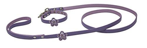 Croci Vanity set C/L, XS, colore: viola