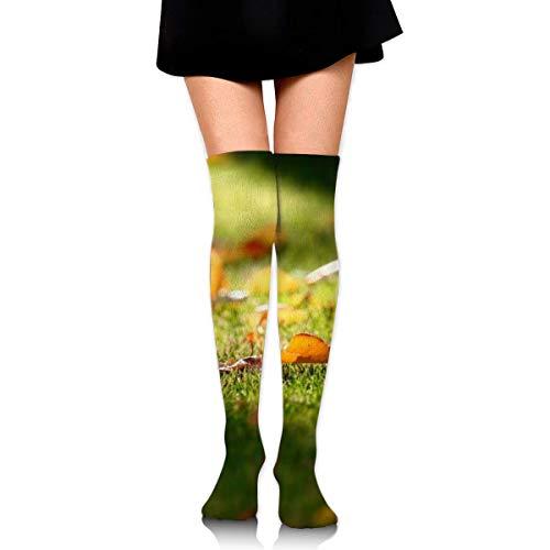 Fallen Leaves Customized Long Full-Length Socks - Running, Sports, Travel, Cycling, Traveling 25.6 Inchs Black (Elite Basketball Socks Youth)