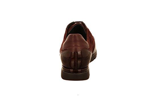Semler  N8215696, Chaussures de ville à lacets pour femme Bordeaux