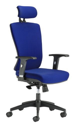chairs-for-offices-134006bl-ergonomic-reclining-office-chair-headrest-and-fixed-lumbar-support-blue-