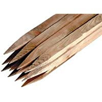 10 x Scandinavian slow grown square pointed treated stakes - 4 ft (1.2m) tall