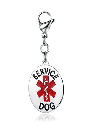Vnox Edelstahl personalisierte Haustier medizinische Alert ID Oval Tags Allergie Service für Hundezubehör,frei eingraviert Pet-diabetes-tag