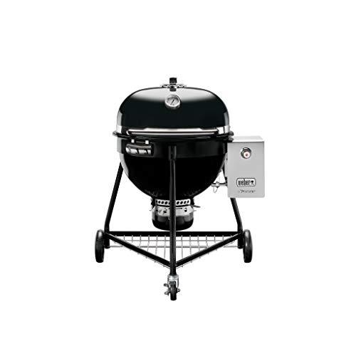 Weber Summit Grill Barrel Charcoal + Natural Gas Black-Barbecues & Grills (Grill, Charcoal + Natural Gas, Barrel, Grate, HINGED LID, Black)