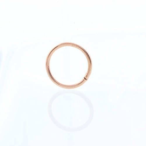 Price comparison product image DIKEWANG 1PC Seamless Hinged Segment Sleeper Clicker Ring Hoop Ear Lip Nose Septum Piercing Jewelry Decoration (Rose Gold)