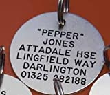 Engraved Silver coloured metal Pet Tag Large Circle