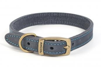 Ancol Timberwolf Leather Collar Blue to fit 26-36cm (sizeS)