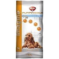 Imagine - Puppy Medium Saco De 1 Kg