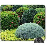 shrubs-mouse-pad-mousepad-grass-mouse-pad