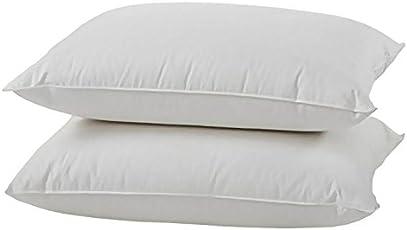 Silk Cotton (ilavam panju) Pillow - 40 x 61 cm, White, 2 Piece