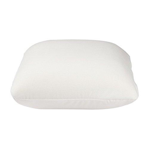 The White Willow mousse à mémoire oreiller décoratif blanc housse en polyester insert de coussin moelleux des articles de cadeau 12 \\