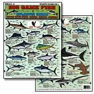 Big Game Fish Of The Atlantic #1 by Tightlines