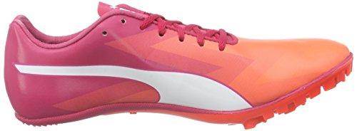 Puma Evospeed Sprint V6 Wn, Chaussures de course pour compétition femme Orange - Orange (fluo peach-white-rose red 01)