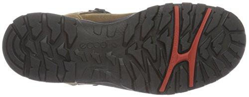 Ecco Xpedition Iii, Chaussures de Randonnée Basses Femme Marron (2034Camel)