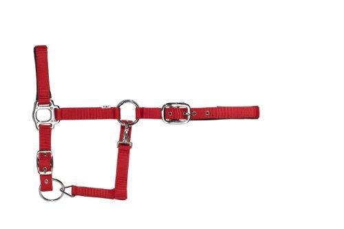 USG Halfter, rot, Extra groß