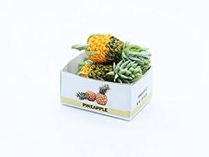 Ananas fruit artisanal Dollhouse miniature alimentation artisanale