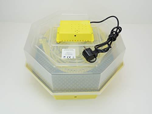 Inkubator Brutkasten Campo24 C1