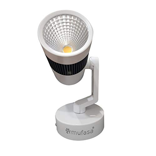 Mufasa LED Spot Light/Focus Light (for Wall or Ceiling Mount) (Warm White, 30W)