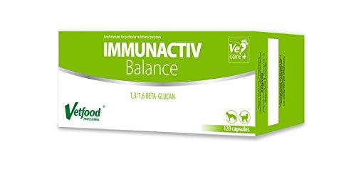 Schalen Hund Erhöht (Vetfood Immunactiv Balance |  Stärkung des Immunsystems von Katzen & Hunden| Bei Stress | Immunfördernd | Hilft nach Krankheit | 120 Kapseln)
